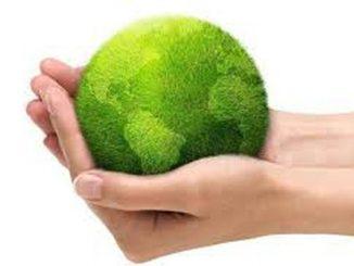 Dia Mundial del Ambiente